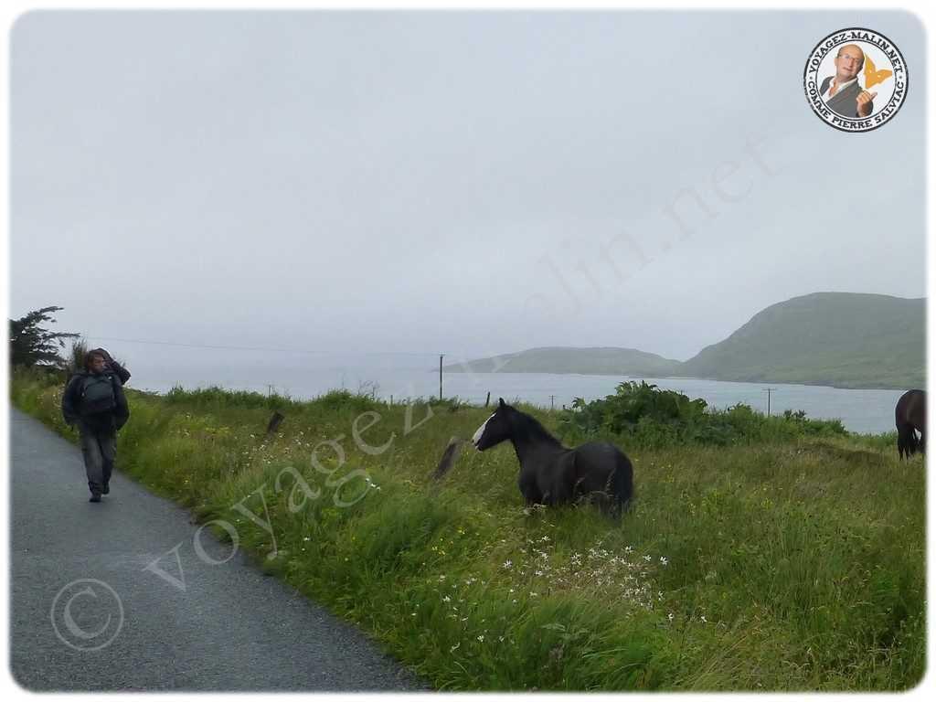 randonnée dans le Connemara