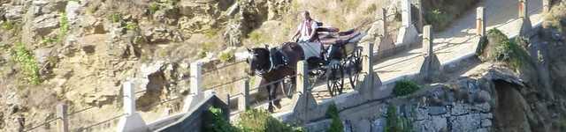 Sark-taxi-cheval-640x150