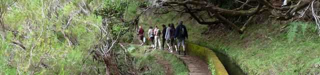 madere-levada-640x150